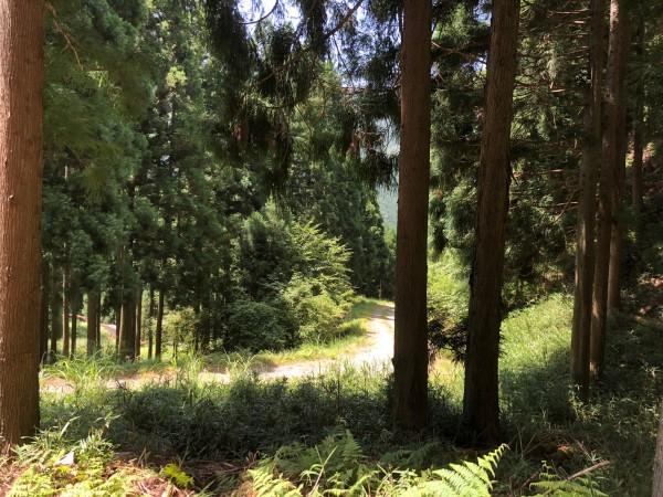 兵庫県産木材を使おう。